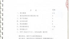 2012年审计报告