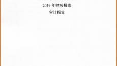 2019年度审计报告